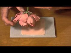 How to Make A Gumpaste Peony (Part 6) - YouTube