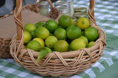 basket of winter limes California Food, Seasonal Food, Limes, Santa Barbara, Farmers Market, Basket, Fruit, Cooking, Winter