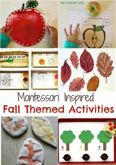 Fabulous Themed Fall Montessori Activities, Apple Activities, Nature Ideas, Leaf activties, Free Printables, Autumn Activities perfect for kids, Fall books