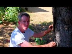 Grey Water is water from the house which is normally washed down the drain (such as laundry water), but is actually good for trees. This video is part of a s. Grey Water System, Water Systems, Tv Videos, Laundry, It Is Finished, Trees, Diy, House, Laundry Room