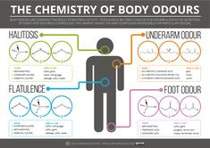 The Chemistry of Body Odours – Sweat, Halitosis, Flatulence & Cheesy Feet Chemistry Classroom, Science Chemistry, Organic Chemistry, Physical Science, Teaching Science, Science Education, Life Science, Study Chemistry, Teaching