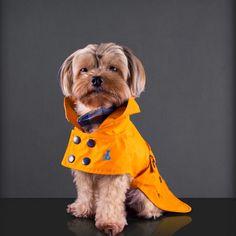 GREEN PARK RAINCOAT // Devon & Drew #pets #dogs