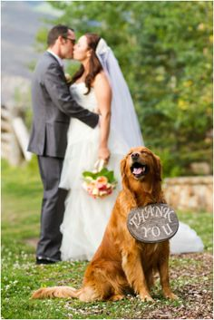 Beaver Creek Wedding by IN Photography via OHL