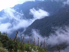 Hoang Lien Son National Park is the ideal eco-tourism and in accordance with scientific research!