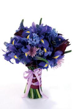 Google Image Result for http://weddingmagazine.co.uk/images/flowers/Purple,%2520lilac%2520and%2520blue%2520flowers/CF_sup_oct-nov08_81.jpg