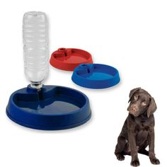 Plastic Dog Food Bowl Pet Feeder Dish Water Dispenser Feeding Cat 7.8' New ! No.13 -- Continue to the product at the image link. (This is an affiliate link and I receive a commission for the sales) #PetDogs