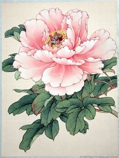 asian floral art at DuckDuckGo Oriental Flowers, Chinese Flowers, Japanese Flowers, Japanese Art, Japanese Peony Tattoo, Peony Painting, Watercolor Flowers, Watercolor Paintings, Art Paintings