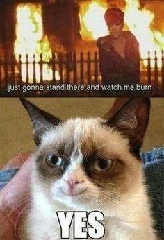 lol grumpy cat strikes again Grumpy Cat Quotes, Funny Grumpy Cat Memes, Cat Jokes, Crazy Funny Memes, Funny Puns, Really Funny Memes, Funny Laugh, Funny Relatable Memes, Cats Humor
