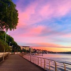 Teneriffe to Brisbane City Botanic Gardens | 22 Brisbane Walks That Will Take Your Breath Away