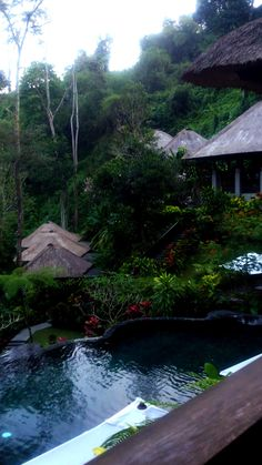 Maya Ubud by ktღ…I stayed at a place similar, it not the same