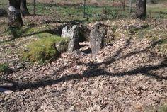 http://misierradegata.com/blog/  Ruta al Dolmen del Matón en Sierra de Gata Caceres