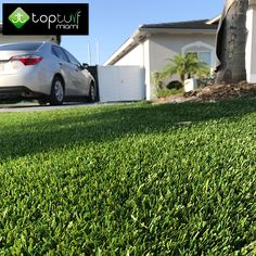 OUR PROJECTS  http://topturfmiami.com  Phones: (English): 786-419.8886 (Spanish): 786-678.7574