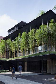Ekouin Nenbutsudo. Muitos temem utilizar parede vegetada (wall Green ) por medo de umidade e/ou infiltrações.  Esta é uma ótima alternativa.