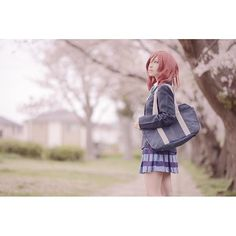 【isakochiyan】さんのInstagramをピンしています。 《#cosplay #photography #photo #ラブライブ #西木野真姫 #桜 #いさこちゃんの写真 #nishikinomaki #lovelive》