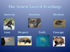 The 7 Sacred Teachings Aboriginal Language, Aboriginal Education, Indigenous Education, Aboriginal History, Aboriginal Culture, Teaching Posters, Teaching Activities, Indigenous People Of Canada, Naidoc Week