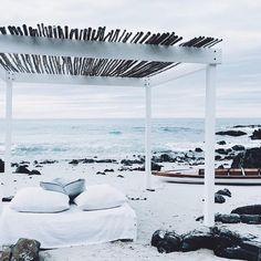 spend the day at this beach on the bed: a dream come true
