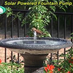 This fountain kit makes an affordable and efficient pump that requires no electricity or batteries, as it runs on solar power alone! ideas decoration decor Last OFF-Solar Powered Fountain Pump