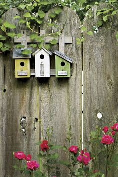 Just love the birdhouses on the fence. Pretty, and it seems like it would be safer for the birds, too.