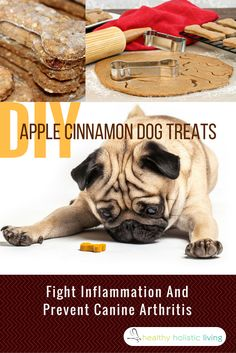 DIY Apple Cinnamon Dog Treats That Fight Inflammation And Prevent Canine Arthritis In Your Pet!