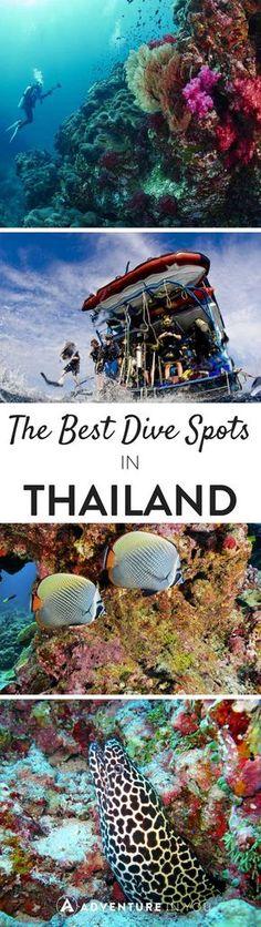 Best Scuba Diving in Thailand, Paradise, Snorkel, Dive, Tropical Destination, Ocean, Coral Reef, Fish, Sea, Beach, Aquatic, Bucket List Trips, Family Vacation, Honeymoon, Getaway, Asia, Holiday, Break