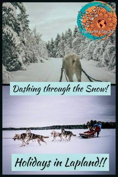 Dashing through the snow! The view of the back end of the reindeer while being pulled in the sleigh, and a dog sled running across the field. Check out how to spend your perfect vacation in Lapland, Finland! Add this to your bucket list! Road Trip Europe, Europe Travel Guide, Winter Destinations, Travel Destinations, Finland Travel, Christmas Travel, Holiday Travel, Dashing Through The Snow, Best Travel Guides