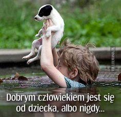Cute Little Boy saving the his Little Jack Russell Terrier Puppy - Aww True Love! Amor Animal, Mundo Animal, I Love Dogs, Puppy Love, Lucky Puppy, Mans Best Friend, Best Friends, Animals For Kids, Cute Animals
