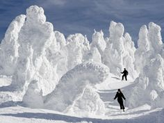 """ichigo-ichie: """"Ski with Snow Monsters Thinking about catching the last of the snow? Japan boasts some of the best skiing in the world, and certainly the most unique. Amongst the top mountain destinations is the Zao Onsen ski resort, where heavy snow..."""