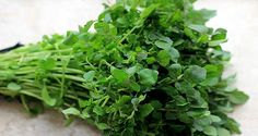 """""""Watercress"""" Seeds Bonsai potted plant DIY home garden Chinese Vegetables, Healthy Vegetables, Fruits And Veggies, Natural Cures, Natural Health, Dhal Recipe, No Carb Food List, Edible Plants, Stir Fry Recipes"""