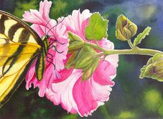 Hollyhock Print featuring the painting Pink Hollyhock by Catherine G McElroy
