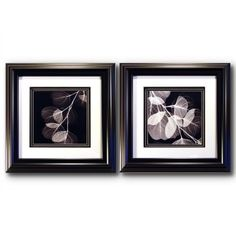 16.5 in. Black & White X-Ray Wall Art - Set of 2