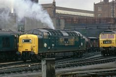 Colour Photo of BR Class 55 Deltic Diesel 55012 at Kings Cross 1975.Click to purchase now from the RailPicsGb shop. #BR #RailBlue #Class55 #Deltic