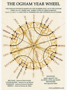 """Ogham Year Wheel"" Canvas Print by Yuri-Leitch Ogham Alphabet, Druid Symbols, Tree Of Life Meaning, Tarot, Native American Spirituality, Astrology Numerology, Halloween Illustration, Celtic Tree, Asatru"