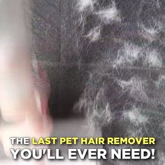Fur Buster Pet Hair Remover Roller Is Your Pet Shedding Everywhere? Tired of vacuuming and using lint rollers that don't work? Then you need the Fur BusterTM Pet Hair Remover Roller – The smarter way to remove pet hair off your furniture!