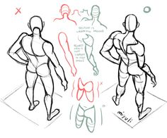 Body Reference Drawing, Anatomy Reference, Drawing Skills, Art Reference Poses, Drawing Techniques, Drawing Tutorials, Art Tutorials, Drawing Sketches, Art Drawings