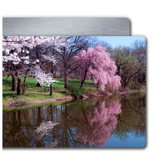 Metal Prints from your digital files. Print Your Photos, Great Photos, Photo Supplies, Purple Trees, Going On A Trip, 1 Image, Metal Wall Art, Serenity, Photo Art