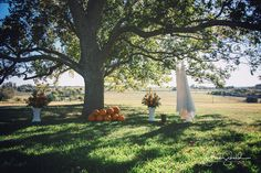 Fall wedding @ The CItadel in Brenham, Texas.