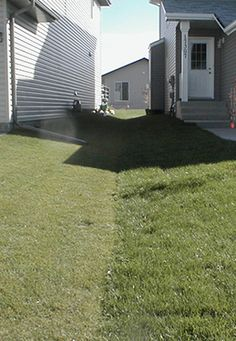 How to Fix Drainage Problems in Your Yard Gutter Drainage, Backyard Drainage, Backyard Patio, Landscape Drainage, Yard Grading, Flood Areas, Side Yard Landscaping, Landscaping Ideas, Water Flood