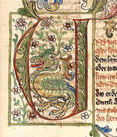 Bibel AT, deutsch. Initiale U mit zwei kämpfenden Affen im Buchstabeninnern. Heidelberg - Universitätsbibliothek. Cod. Pal. germ. 19, fol. 184r