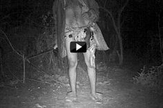 Suspected to be mentally unstable, this man is often spotted lurking in Aarey Colony's forests at night, when he steals water, clothes, utensils or anything that local residents leave outside Mumbai News, Night Forest, Crosses, Utensils, Weapons, Patches, Milk, Sleep, Videos