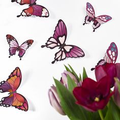 Wandtattoo Schmetterling Küche Tür Aufkleber Badezimmer Hibiskus Gäste WC