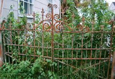 More rusty iron. Love the fence!
