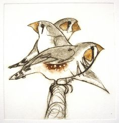 Three Finches - etching - Bridget Farmer, Australia (born Northern Ireland)