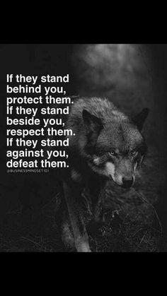 Hvis de står bag dig, skal du beskytte dem. Hvis de står ved siden af dig, respekterer du dem. Hvis de står imod dig, besejret du dem.