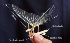 An ornithopter is a rubber band powered plane that flaps its wings. Leonardo da Vinci drew pictures of ornithopters in his famous sketchbook. Kinetic Toys, Kinetic Art, Diy And Crafts, Paper Crafts, Mechanical Art, Model Airplanes, Paper Models, Rubber Bands, Wood Toys