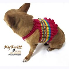 Best pets harness for teacup dog and puppy design by Myknitt www.myknitt.com #handmade #diy #cotton #dogharness #pets #puppy #myknitt