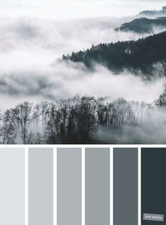 Smokey grey color palette #color #colorpalette #grey