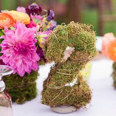Brides: Moss Table Number and Vivid Centerpiece. Tables numbers were formed out of moss.