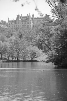 The most dramatic view of Biltmore House is en route from the house to the winery. Look for the small lake (Lagoon) on your left. There is a narrow unpaved road at the far end that crosses a small bridge and takes you around the lake for a stunning view of back of the Biltmore House, quite beautiful and makes for great photo's. ..................