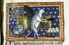 Illustration on parchment from a medieval bestiary; England, 13th century, second quarter (MS. Bodl. 764)