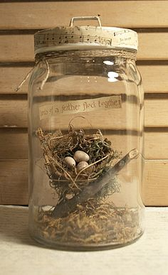 Bird's Nest in Glass Jar - Cloche